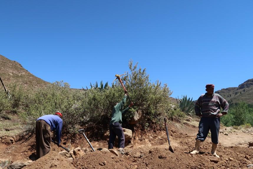anti-erosion labor, donga recovery, drought, Malealea, Lesotho, Southern Africa, Malealea Development Trust