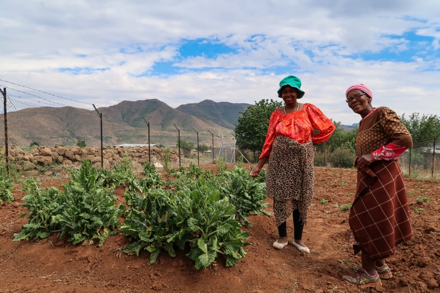 Ha Raboletsi Orphaned Children Vegetable Garden, Roma, Lesotho, Southern Africa, photo by Kelly Benning